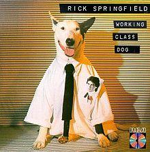 220px-Working_class_dog