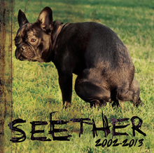 Seether_2002-2013