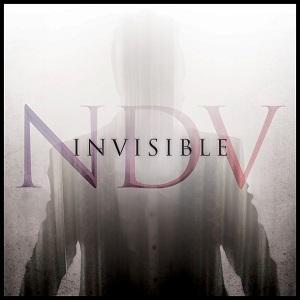 ndv invisible